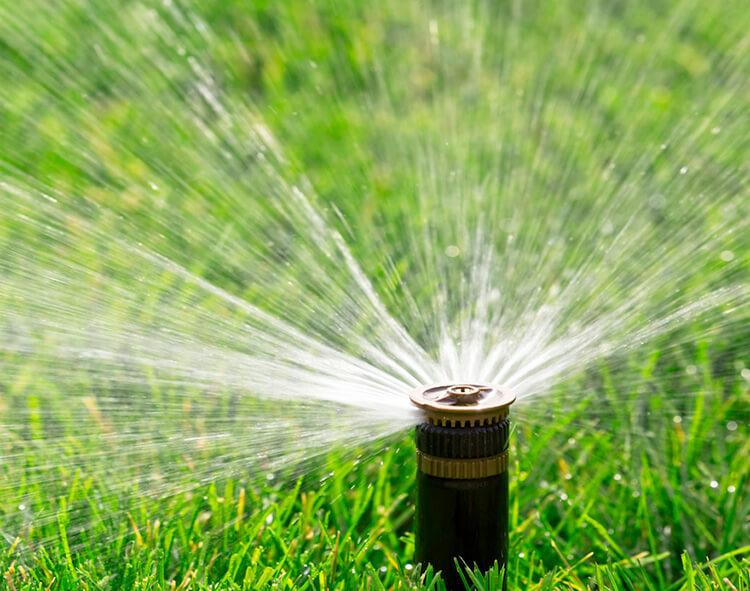 Sprinkler Spraying Lawn
