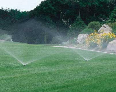 Automatic Irrigation System Throughout Backyard